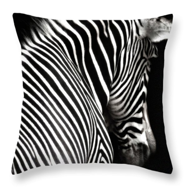 Zebra on Black Throw Pillow by Elle Arden Walby