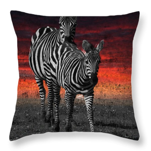 Zebra Train - Featured In Nature Photography - Wildlife And A Place For All Groups Throw Pillow by EricaMaxine  Price