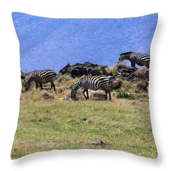 Zebras In The Ngorongoro Crater Tanzania Throw Pillow by Aidan Moran