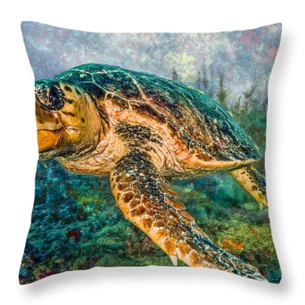 Zen Garden Throw Pillow by Debra and Dave Vanderlaan