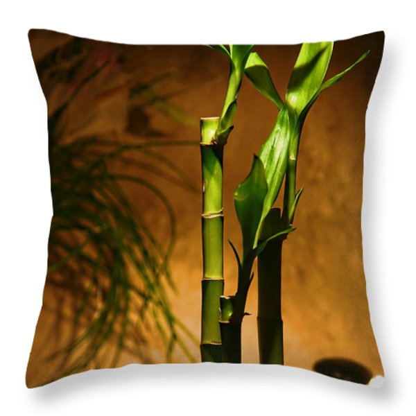 Zen Time Throw Pillow by Olivier Le Queinec