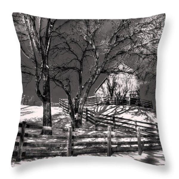 Zigzag Fencerow Throw Pillow by William Fields