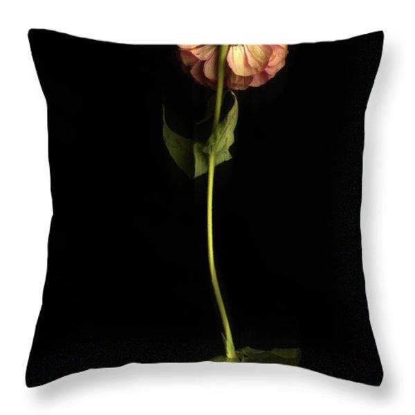 Zinnia Throw Pillow by Bernard Jaubert