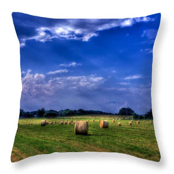 Zippy's Hayfield Showered by Sunrays Throw Pillow by Reid Callaway