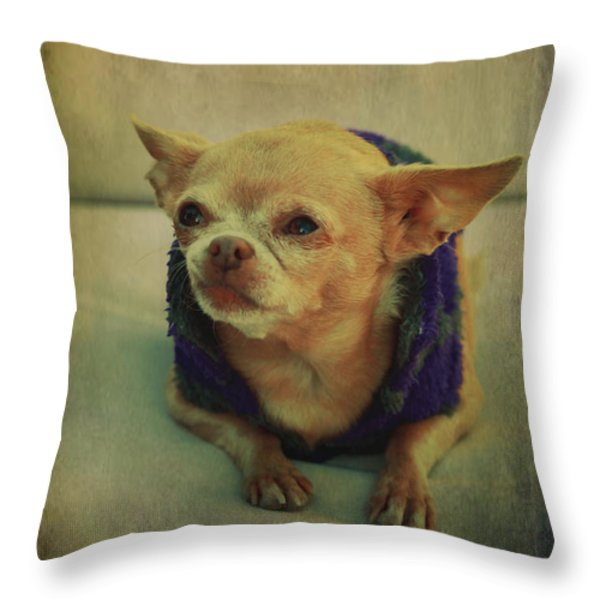 ZoZo Throw Pillow by Laurie Search