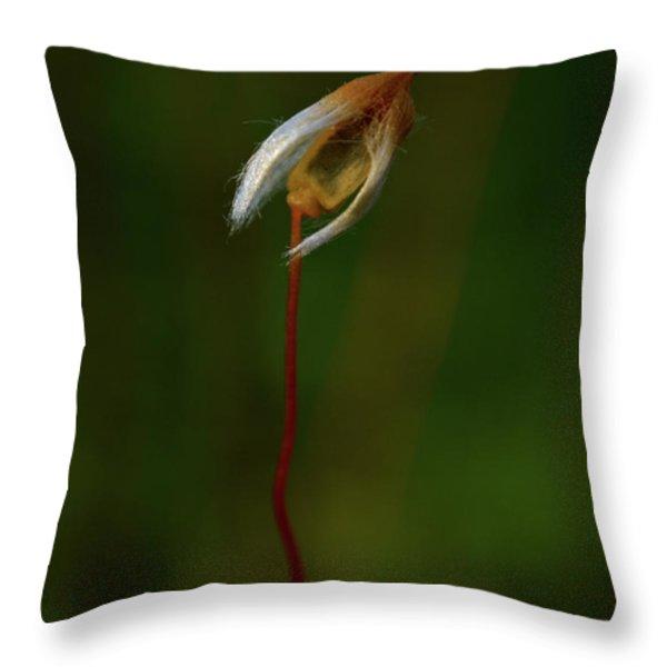 Alone Throw Pillow by Jouko Lehto
