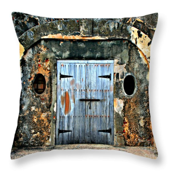 Old Wooden Doors Throw Pillow by Perry Webster