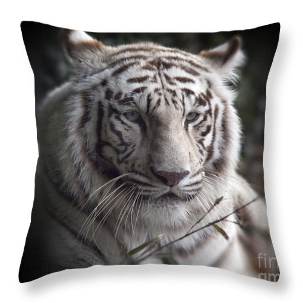 The Tiger's  Watchful Eye Throw Pillow by Heinz G Mielke