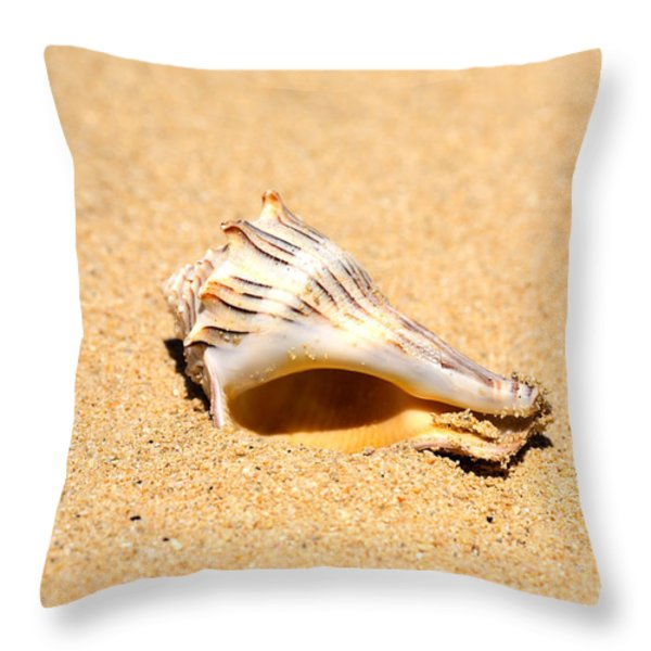 Whelk Sea Shell Throw Pillow by Cheryl Young