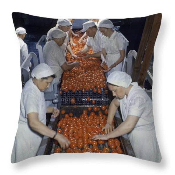 00001tmp Throw Pillow by National Geographic