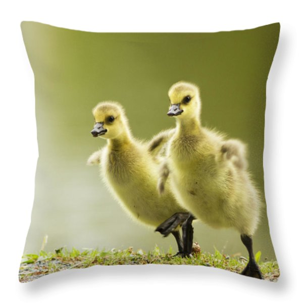 1 2 3 Go Throw Pillow by Mircea Costina Photography