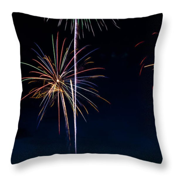 20120706-dsc06455 Throw Pillow by Christopher Holmes