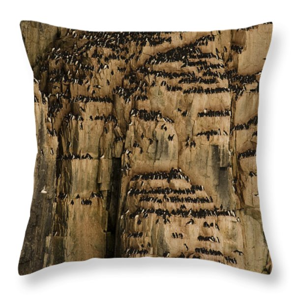 A Colony Of Little Auks Line Jagged Throw Pillow by Norbert Rosing