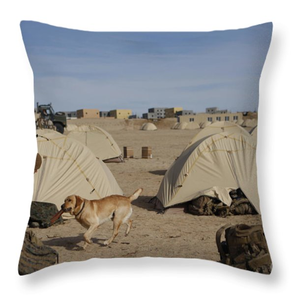 A Dog Handler And His Military Working Throw Pillow by Stocktrek Images