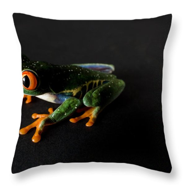 A Red-eyed Tree Frog Agalychnis Throw Pillow by Joel Sartore