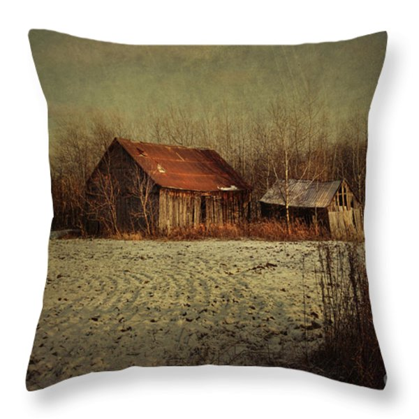 Abandoned Barn After The First Snow Throw Pillow by Sandra Cunningham