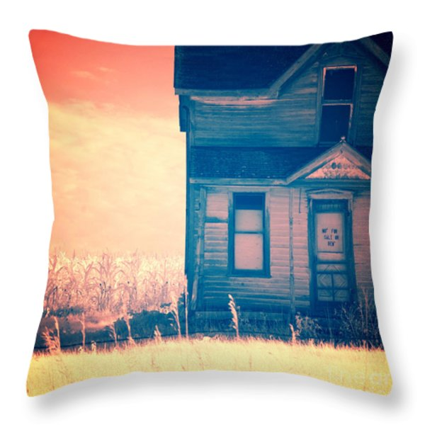 Abandoned House Throw Pillow by Jill Battaglia