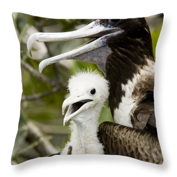 Adult Frigatebird Fregata Species Throw Pillow by Tim Laman