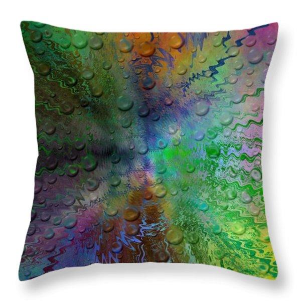 After The Rain 2 Throw Pillow by Tim Allen