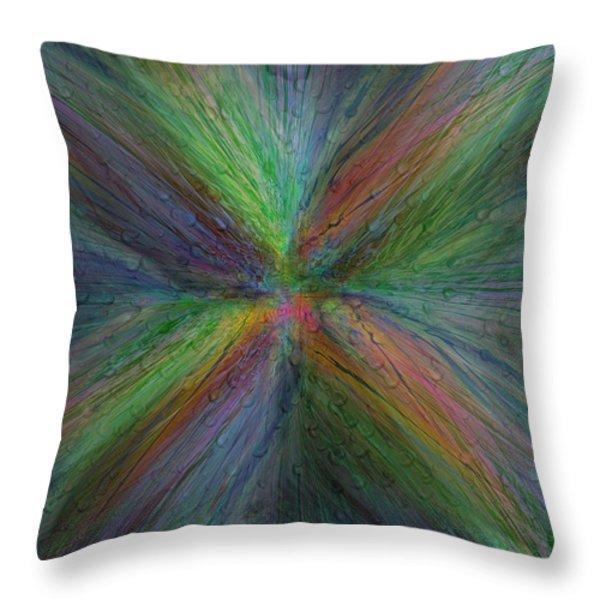 After The Rain 3 Throw Pillow by Tim Allen
