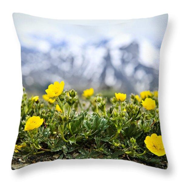 Alpine Meadow In Jasper National Park Throw Pillow by Elena Elisseeva