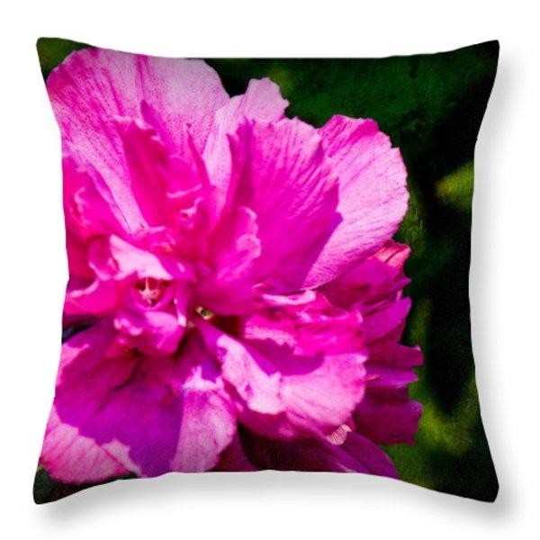 Althea Blossom Throw Pillow by Barry Jones