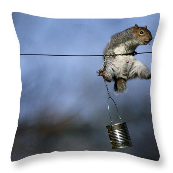 An Eastern Gray Squirrel Sciurus Throw Pillow by Chris Johns
