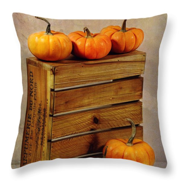 Autumn Still Life Throw Pillow by Judi Bagwell