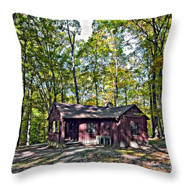 Babcock Cabin Throw Pillow by Steve Harrington