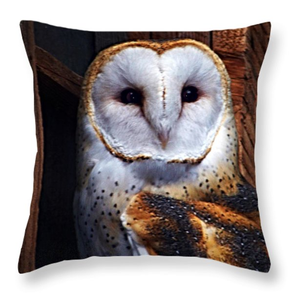 Barn Owl  Throw Pillow by Anthony Jones