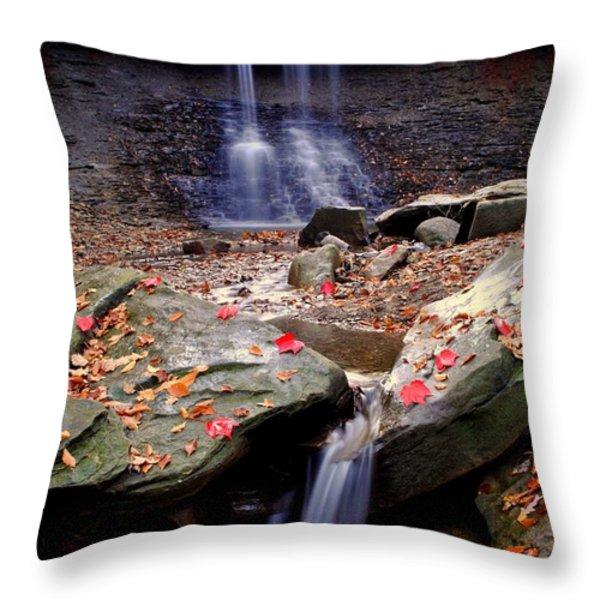 Blue Hen Falls Throw Pillow by Frozen in Time Fine Art Photography