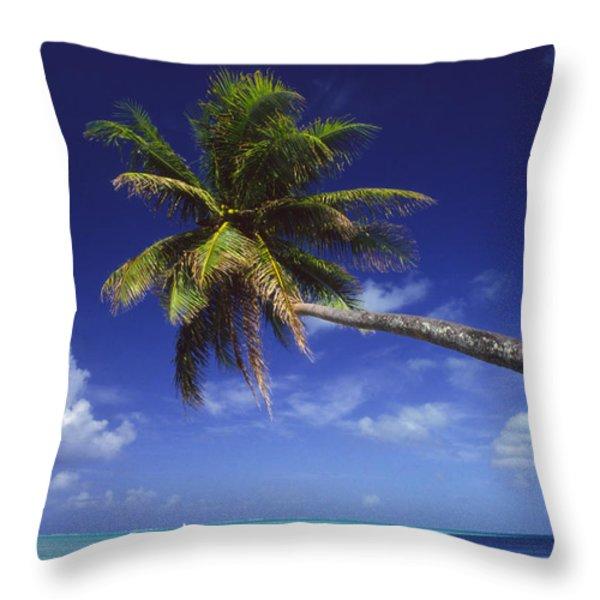 Bora Bora, Palm Tree Throw Pillow by Ron Dahlquist - Printscapes