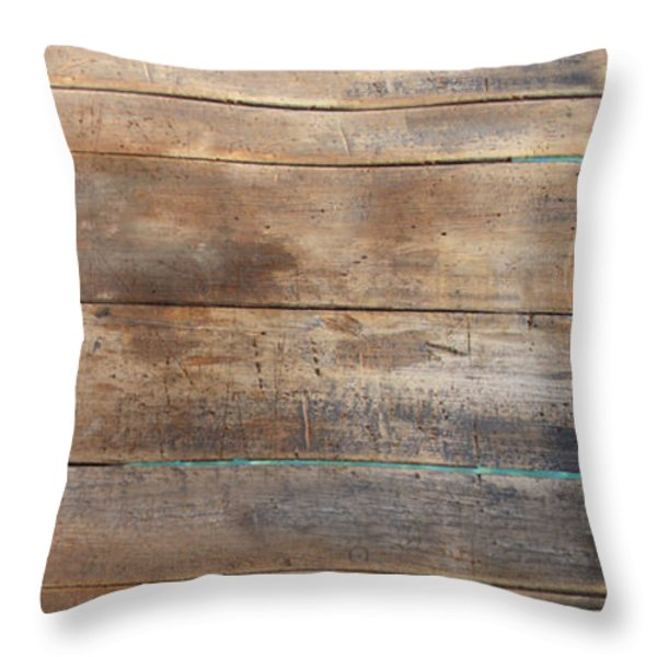 Brown Sandals On Withered Wood Throw Pillow by Sandra Cunningham