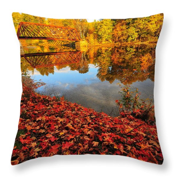 Burst of Colors Throw Pillow by Catherine Reusch  Daley