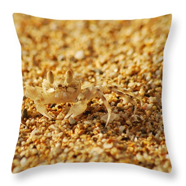Camouflaged Throw Pillow by Michael Peychich