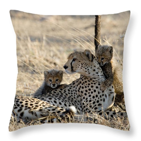Cheetah Mother And Cubs Throw Pillow by Gregory G. Dimijian, M.D.