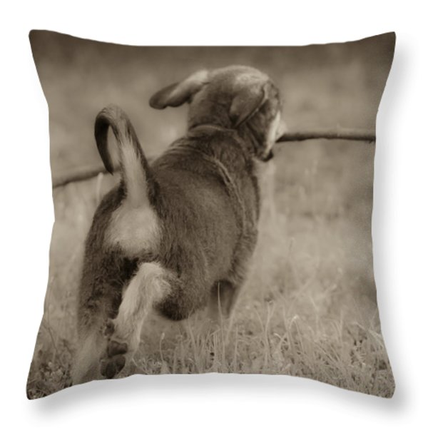 Classic Throw Pillow by Kim Henderson