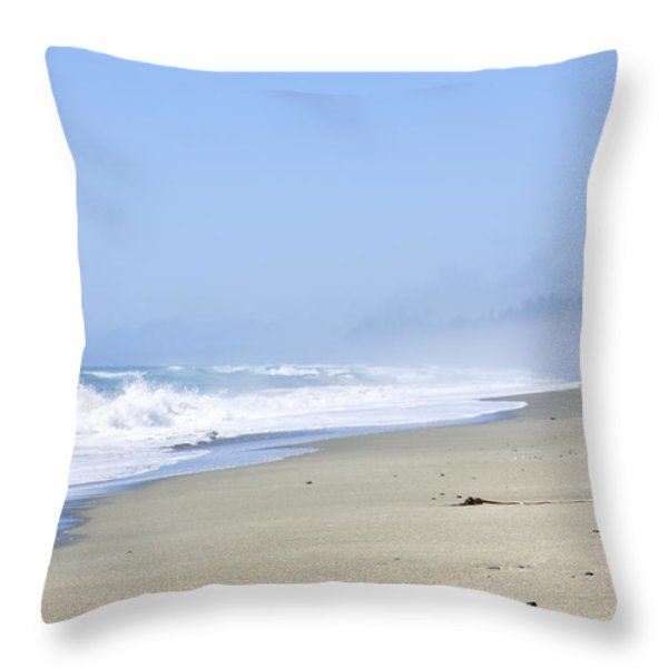Coast of Pacific ocean in Canada Throw Pillow by Elena Elisseeva