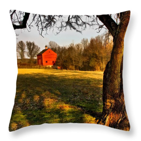 Country Life Throw Pillow by Susan Candelario
