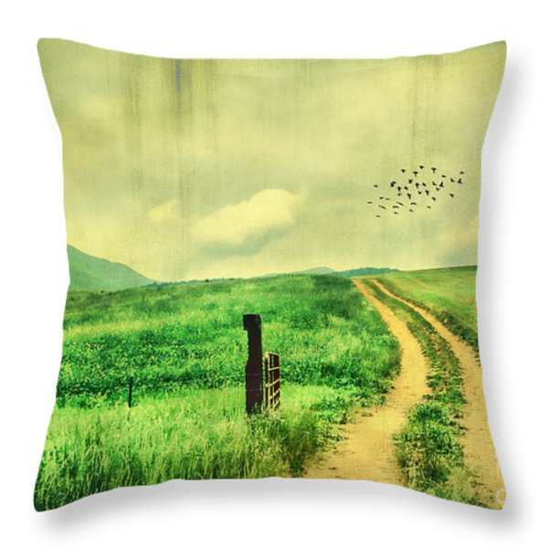 Country Roads Throw Pillow by Darren Fisher