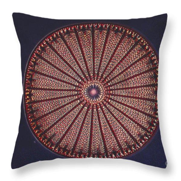 Diatom Throw Pillow by Eric V. Grave