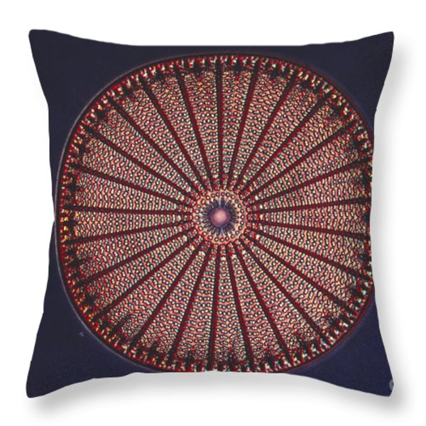 Diatom Throw Pillow by Eric V. Grave