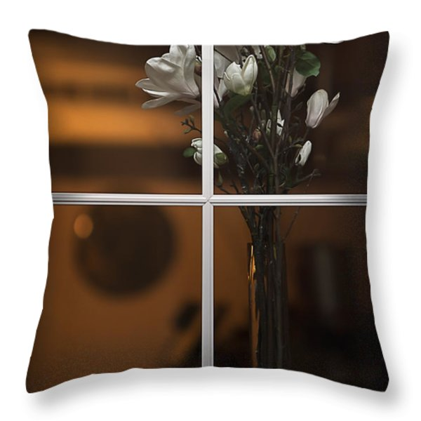 Elegance Throw Pillow by Doug Sturgess