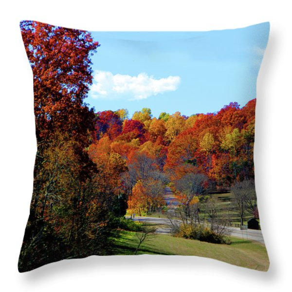 Fall Drive in Tennessee Throw Pillow by EricaMaxine  Price