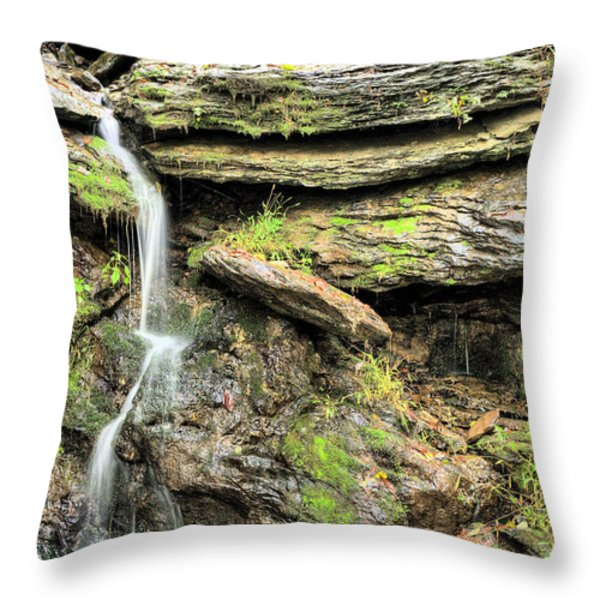 Falling Waters Throw Pillow by JC Findley