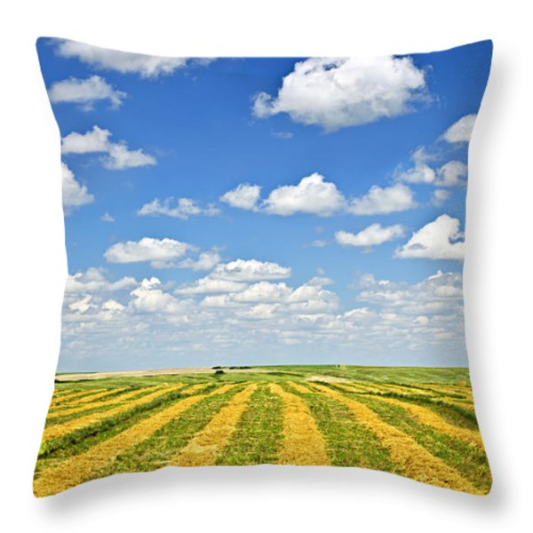 Farm field at harvest in Saskatchewan Throw Pillow by Elena Elisseeva
