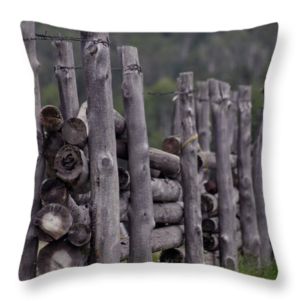 Fenced In  Throw Pillow by Juls Adams
