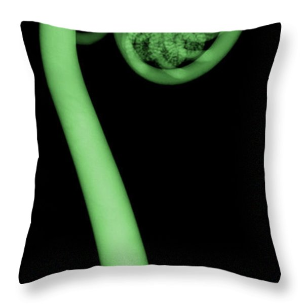Fern, X-ray Throw Pillow by Ted Kinsman