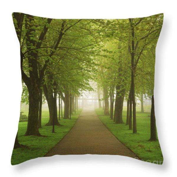 Foggy park Throw Pillow by Elena Elisseeva