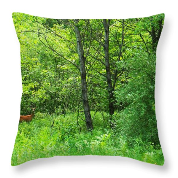 For Tori Throw Pillow by Anna Villarreal Garbis